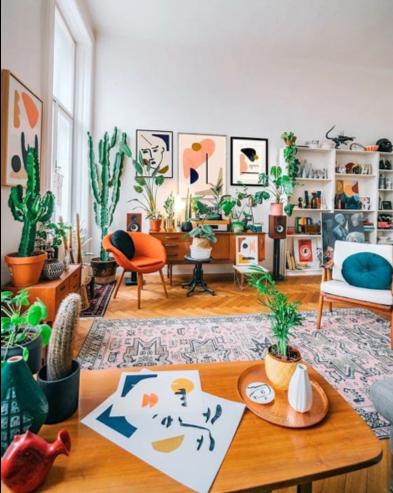 piante da salotto per arredo in stile hippie