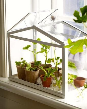 serra in vetro