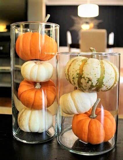 vaso con zucche arancioni e bianche